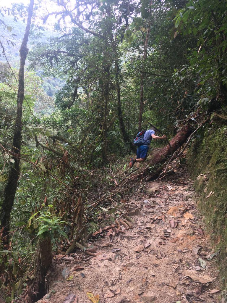 00013 hike