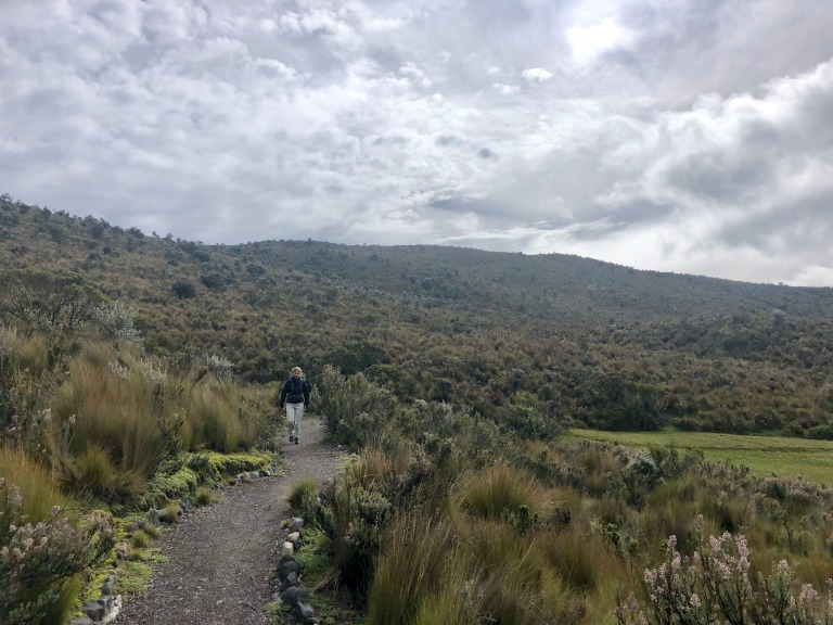 00014 hikecotopaxi