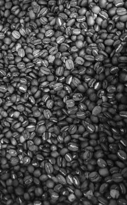 00016 koffie7