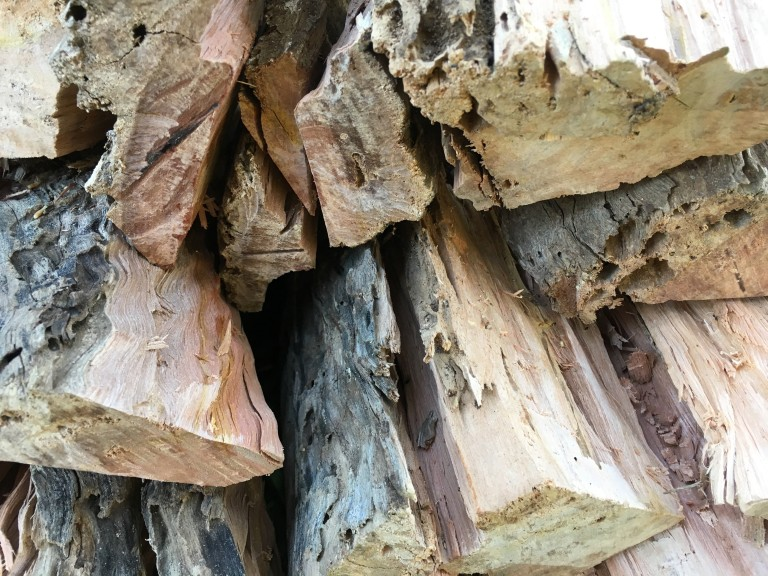 00005 Hout