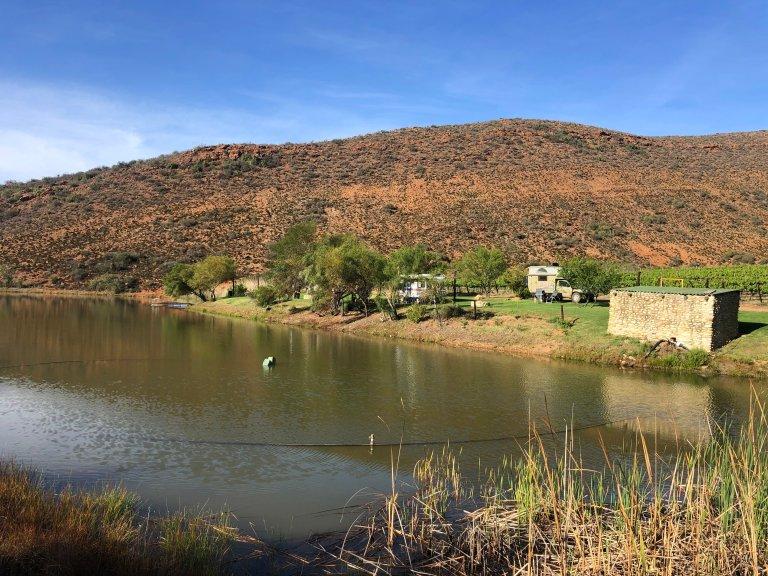 camping wijngaard