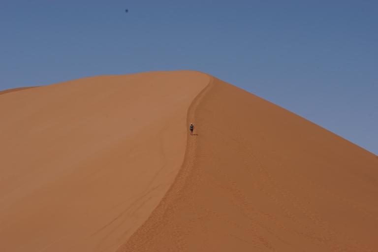 00019 dune452